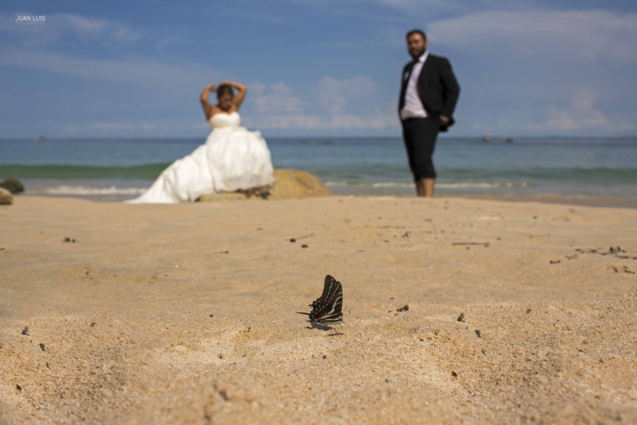 Puerto Vallarta, Trash the dress | Jardin Botanico | Ceci y Hector