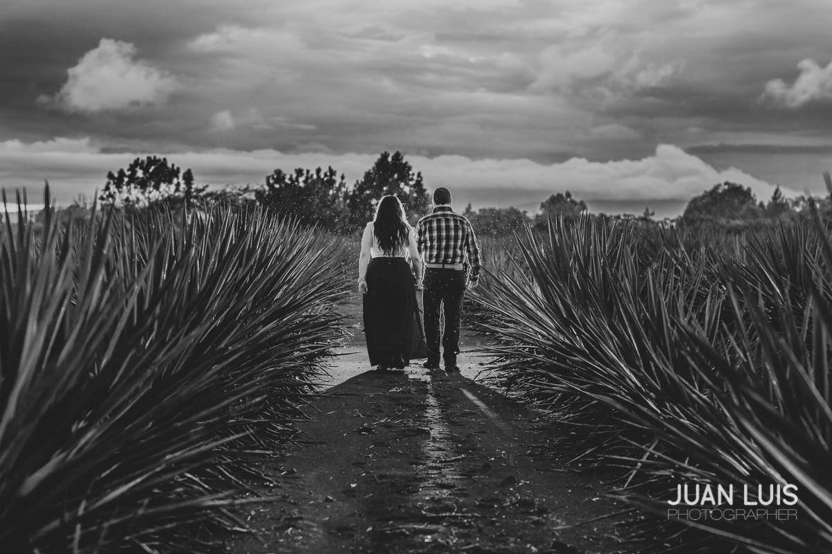 Boda Aguascalientes | Adriana + Miguel
